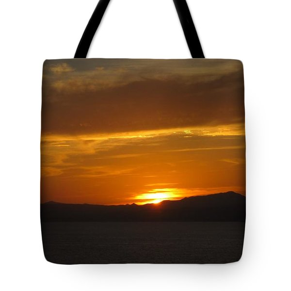 Tote Bag featuring the photograph Puerto Vallarta Sunset by Marilyn Wilson