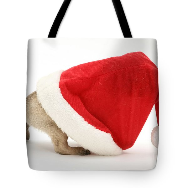 Pug Puppy Tote Bag by Jane Burton