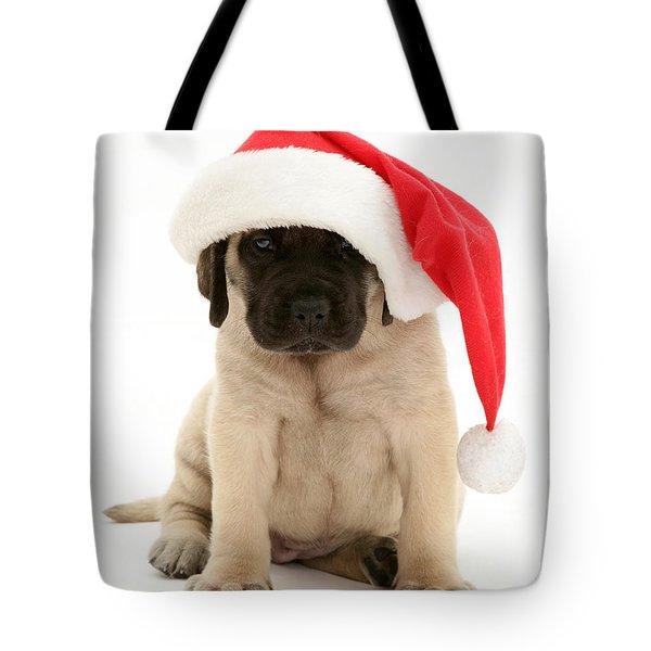Puppy In A Santa Hat Tote Bag by Jane Burton