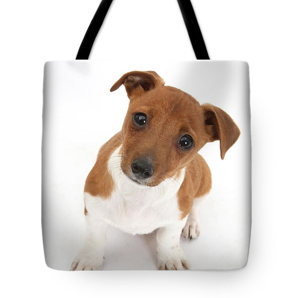 Puppy Looking Up Tote Bag by Mark Taylor