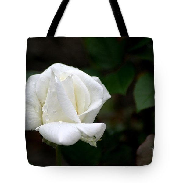 Pure As Snow Tote Bag by Living Color Photography Lorraine Lynch