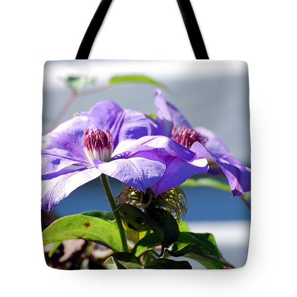 Tote Bag featuring the photograph Purple Clematis by Linda Cox