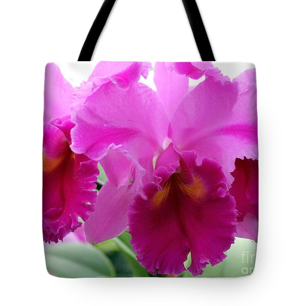 Tote Bag featuring the photograph Purple Explosion by Debbie Hart