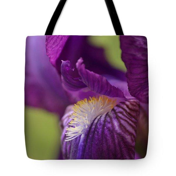 Purple Iris 1 Tote Bag