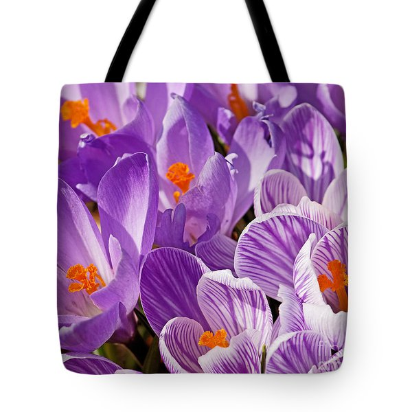 Purple Oh Purple Tote Bag