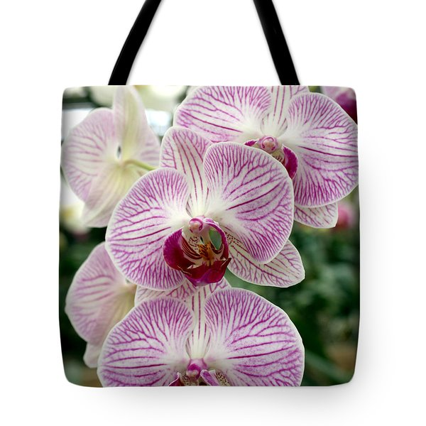 Tote Bag featuring the photograph Purple Orchids by Debbie Hart