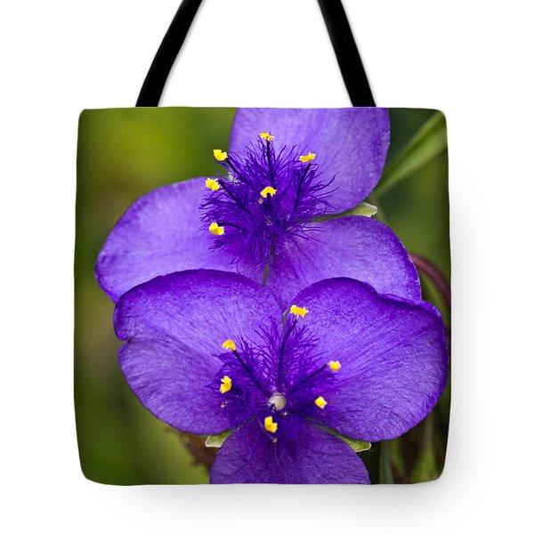 Purple Spiderwort 1 Tote Bag