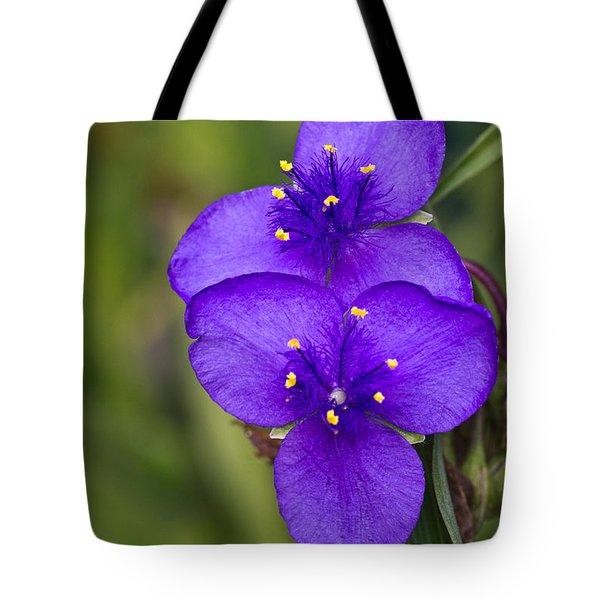 Purple Spiderwort 2 Tote Bag