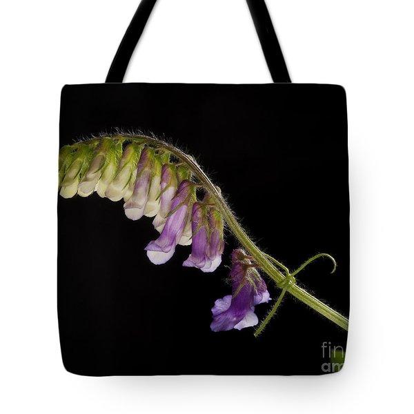 Purple Vetch Tote Bag by Art Whitton