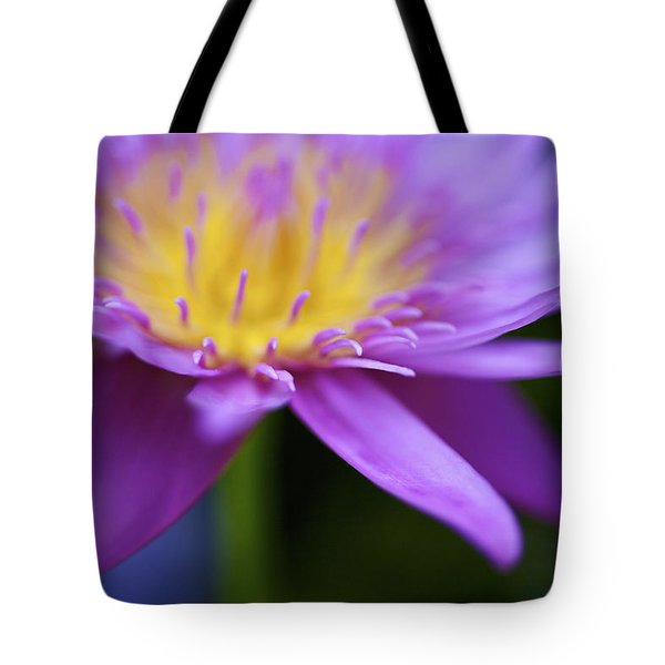 Purple Water Lily Petals Tote Bag by Kicka Witte