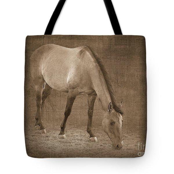 Quarter Horse In Sepia Tote Bag by Betty LaRue