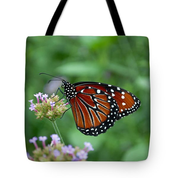 Tote Bag featuring the photograph Queen Butterfly by Eva Kaufman