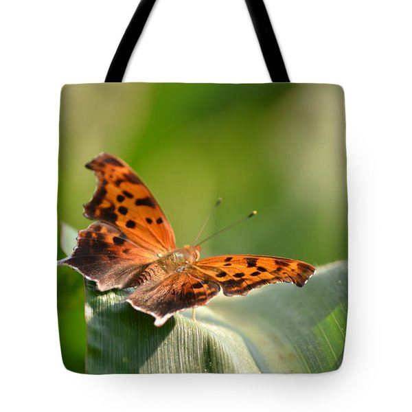 Tote Bag featuring the photograph Question Mark Butterfly by JD Grimes