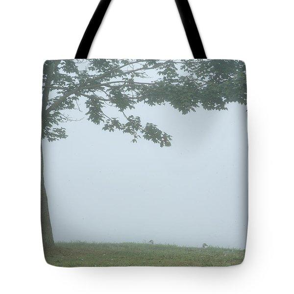 Quiet Fog Rolling In Tote Bag by Karol Livote