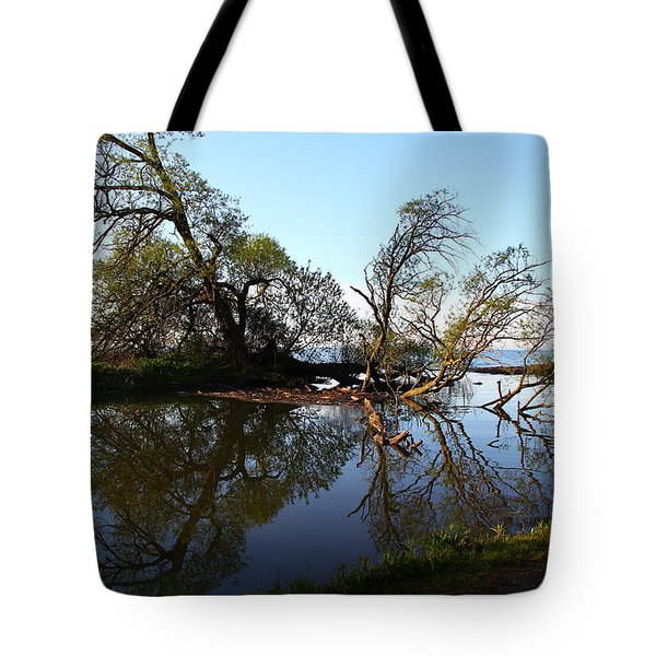 Quiet Reflection Tote Bag by Davandra Cribbie