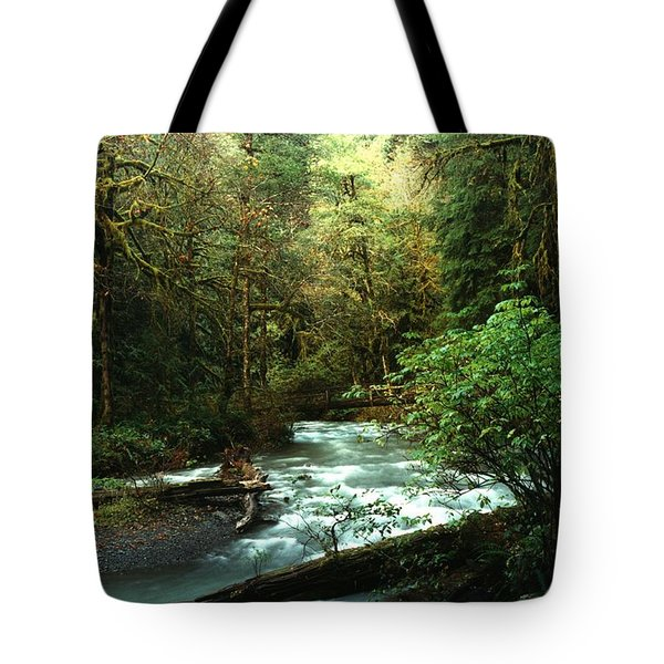 Tote Bag featuring the photograph Quineault Rain Forest by Rick Frost