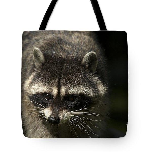 Raccoon 2 Tote Bag