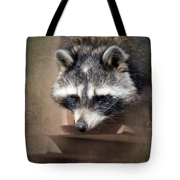 Raccoon 3 Tote Bag by Betty LaRue
