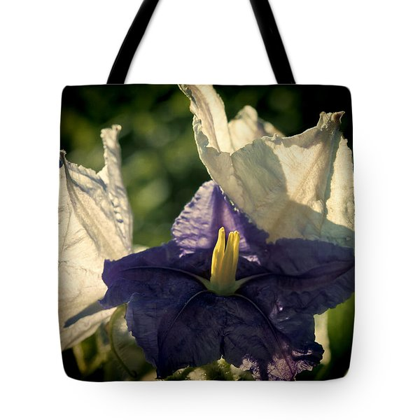 Tote Bag featuring the photograph Radiance by Steven Sparks