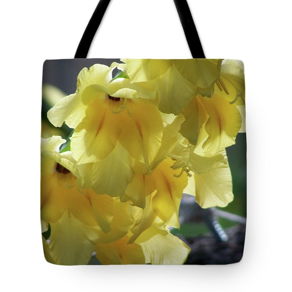 Tote Bag featuring the photograph Radiance by Thomas Woolworth