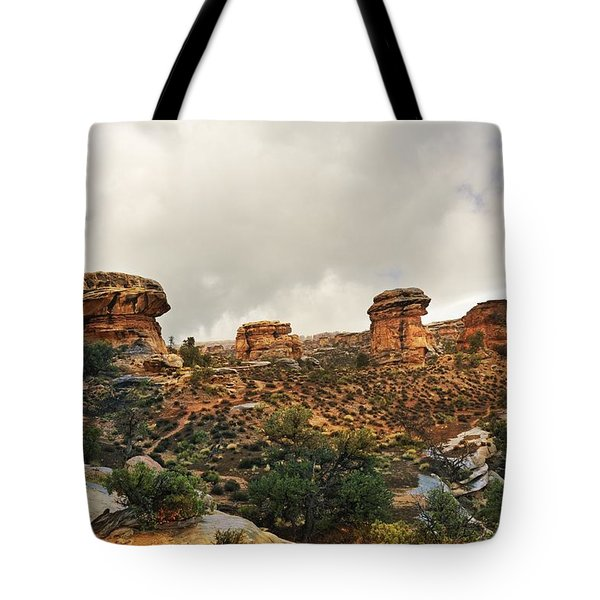 Rain At The Needles District Tote Bag by Marty Koch