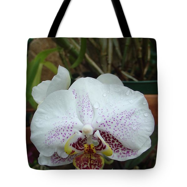 Rain Drops On Orchid Tote Bag