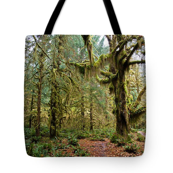 Rain Forest In Fall Tote Bag