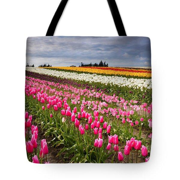 Rainbow Fields Tote Bag by Mike  Dawson