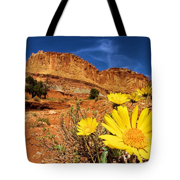 Rainbow Garden Tote Bag