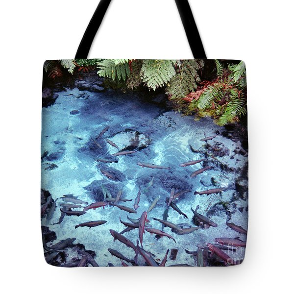 Tote Bag featuring the photograph Rainbow Springs by Mark Dodd