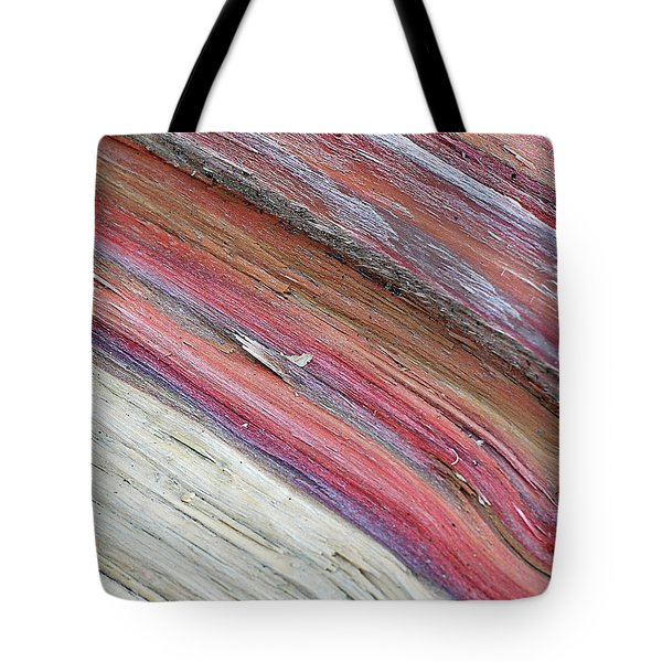 Tote Bag featuring the photograph Rainbow Wood by Lisa Phillips