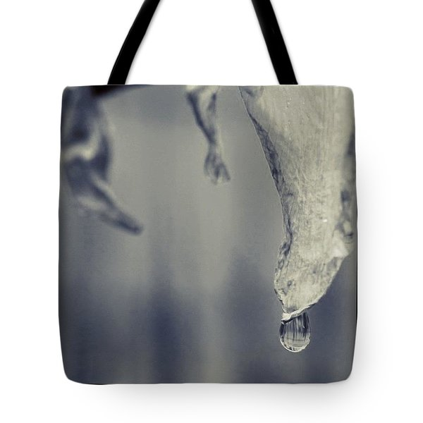 Raindrop On A Dying Daffodil Tote Bag