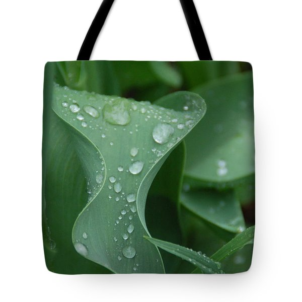 Raindrops Tote Bag by Aimee L Maher Photography and Art Visit ALMGallerydotcom