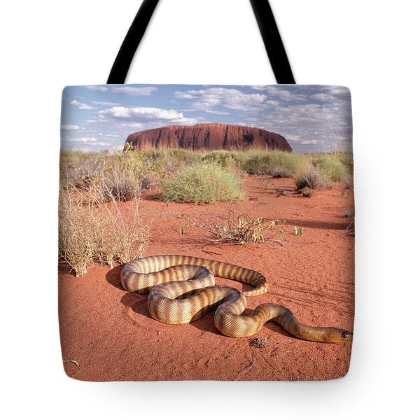 Ramsays Python Aspidites Ramsayi Tote Bag by Michael & Patricia Fogden