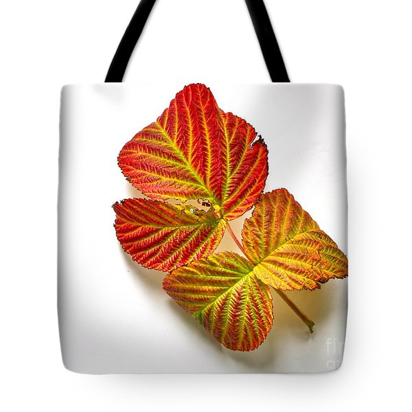 Raspberry Leaves In Autumn Tote Bag by Sean Griffin