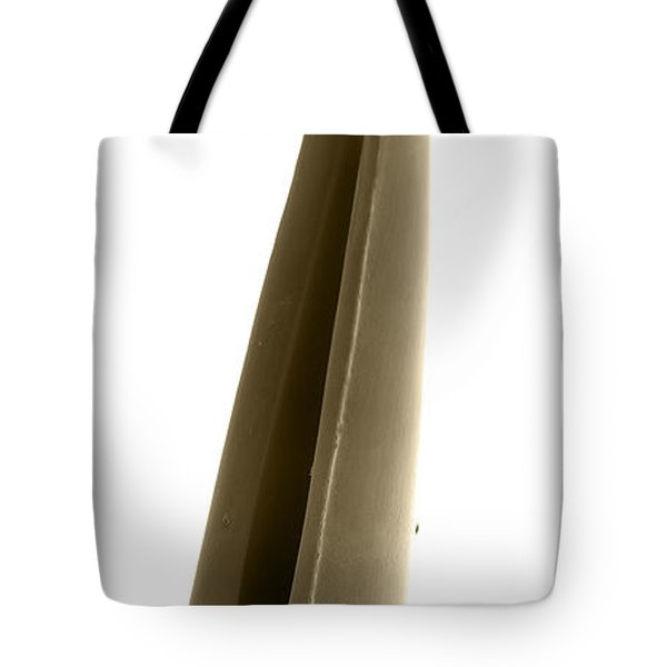 Rattlesnake Fang, Sem Tote Bag by Ted Kinsman