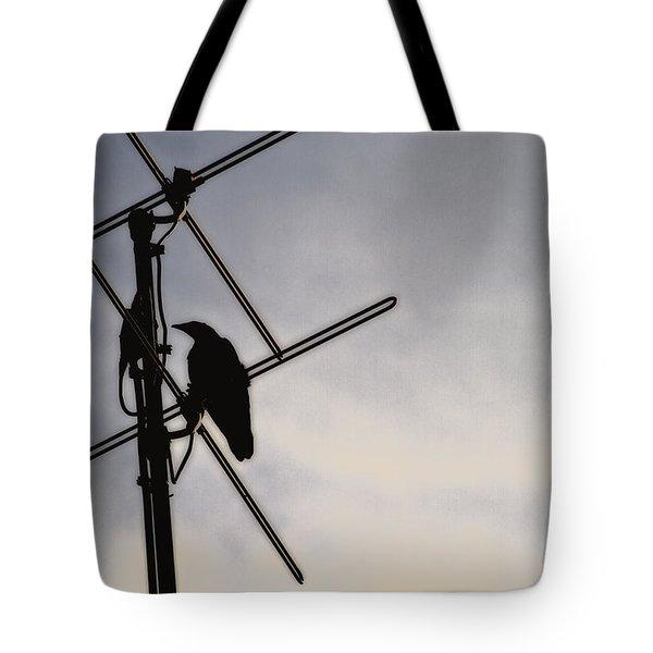Ravens Perch Tote Bag by Karol Livote