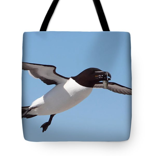 Razorbill In Flight Tote Bag by Bruce J Robinson