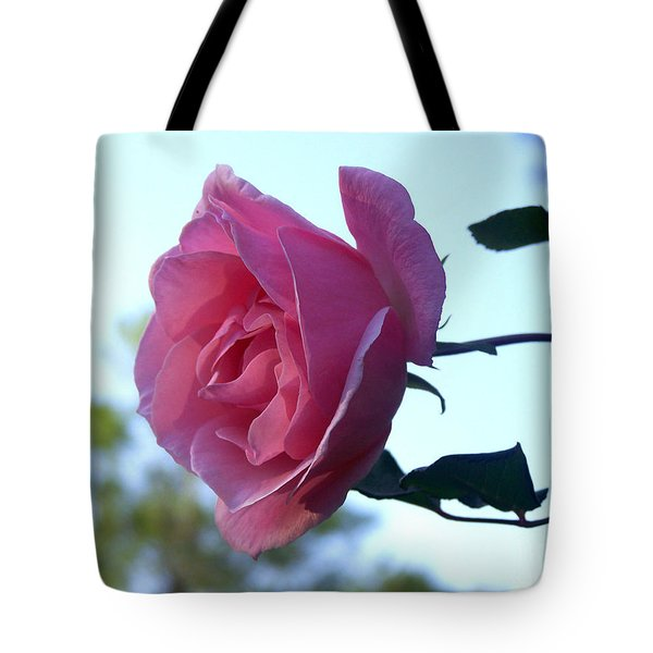 Tote Bag featuring the photograph Reaching For Sunlight by Kathy  White