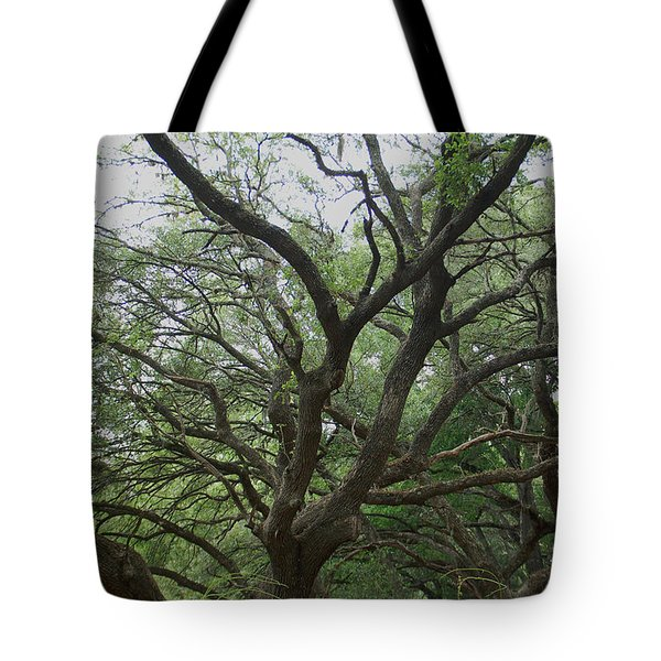 Reaching Out Tote Bag by Aimee L Maher Photography and Art Visit ALMGallerydotcom