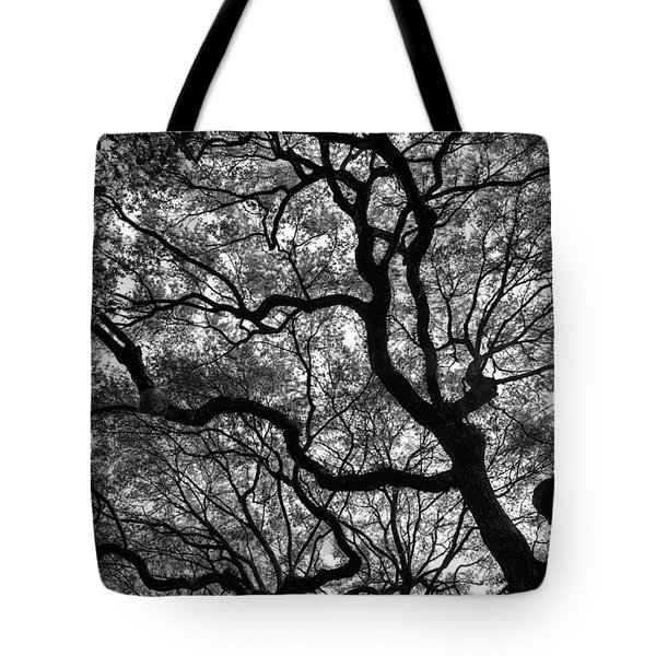 Reaching To The Heavens Tote Bag
