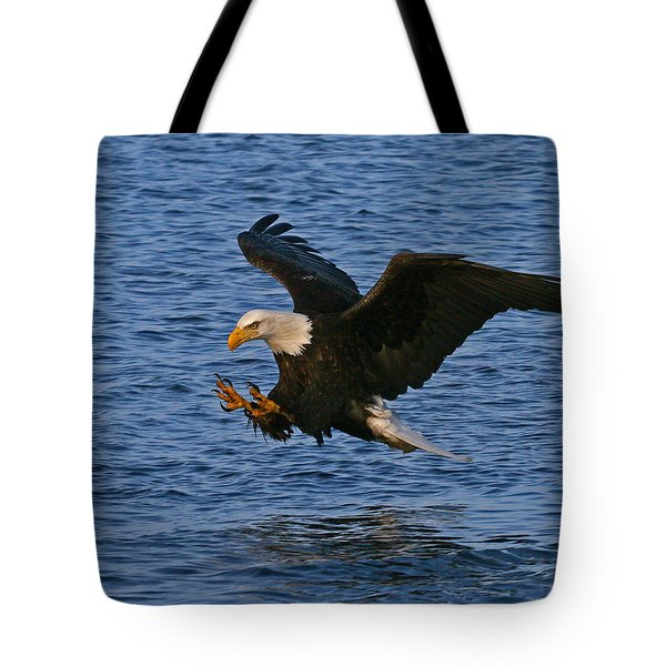 Tote Bag featuring the photograph Ready To Strike by Doug Lloyd