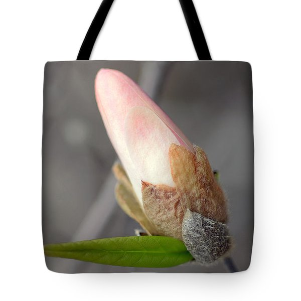Ready To Unfold Tote Bag by Lisa Phillips