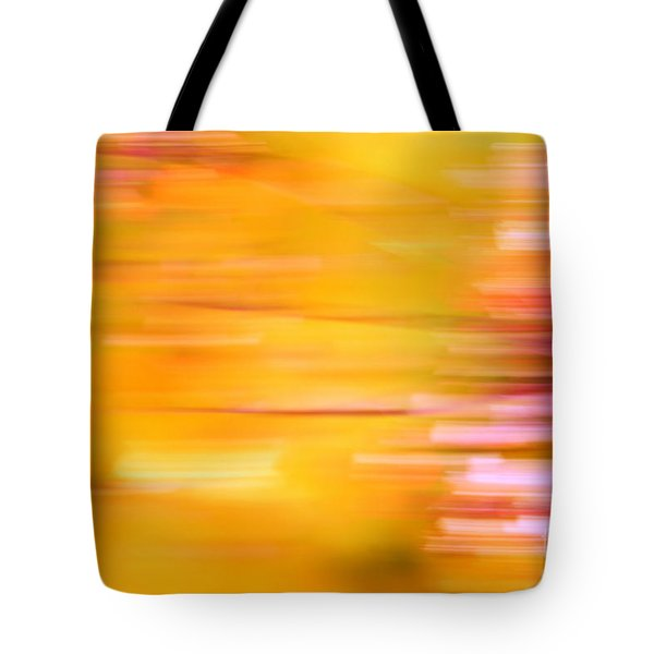 Rectangulism - S07a Tote Bag by Variance Collections