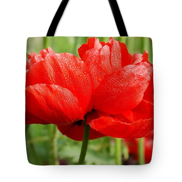 Tote Bag featuring the photograph Red And Green by Fotosas Photography