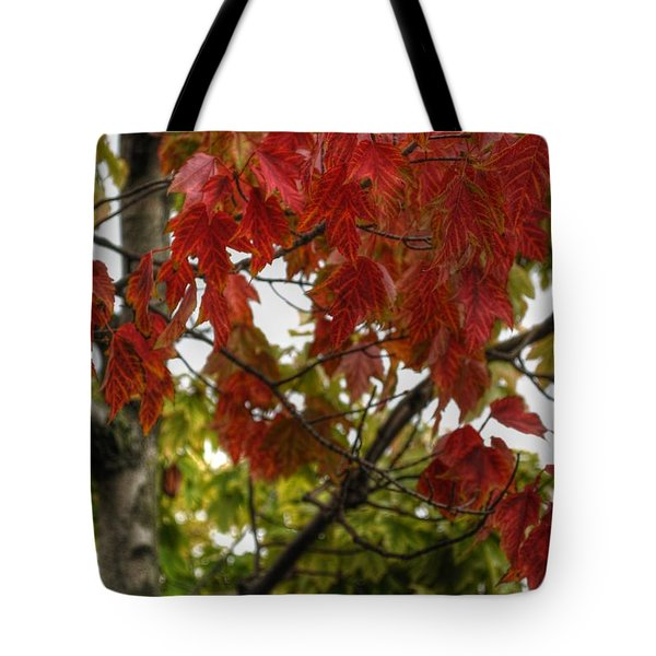 Tote Bag featuring the photograph Red And Green Prior X-mas by Michael Frank Jr