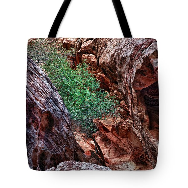 Red And Green Tote Bag by Rick Berk
