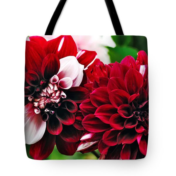 Red And White Variegated Dahlia Tote Bag by Kaye Menner