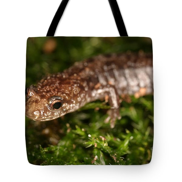 Red-backed Salamander Tote Bag by Ted Kinsman