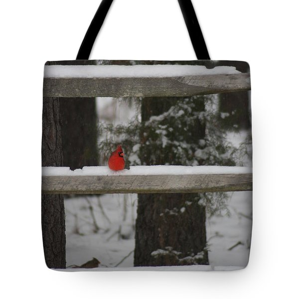 Tote Bag featuring the photograph Red Bird by Stacy C Bottoms